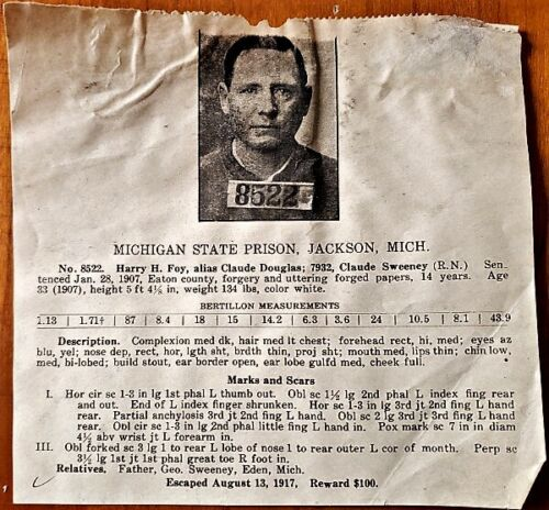 1917 MICHIGAN STATE PRISON ESCAPEE WANTED POSTER $100 Reward for Harry Foy NR
