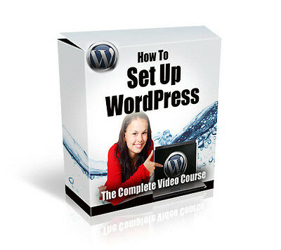 Wordpress  Setup Video Training Course With Plr Resell Rights   Cd Dvd