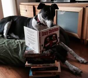 Buy books and help save greyhounds! Massive Greyt Book Sale Fairfield Darebin Area Preview