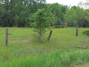 1 Acre land for Sale - PONTIAC, near Quyon, QC Gatineau Ottawa / Gatineau Area image 5