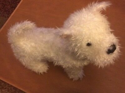 "Older Douglas White Curly Haired Dog 12"""