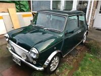Rover Mayfair Mini Auto, 43,000 miles, 1 previous owner, immaculate condition