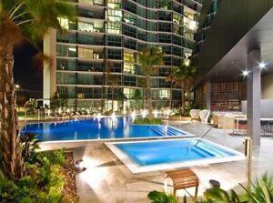 Room for rent Hamilton $250 Hamilton Brisbane North East Preview