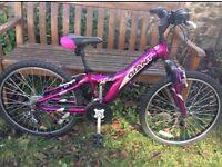 """GIANT mtx 250 bike 22"""""""