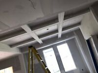 Free Estimate! Steel Stud framing drywall Tbar,Custom Ceilings