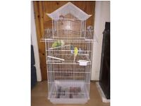 6x Budgies with Stylish Cage