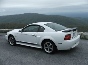 2003-04 Ford Mustang Mach 1