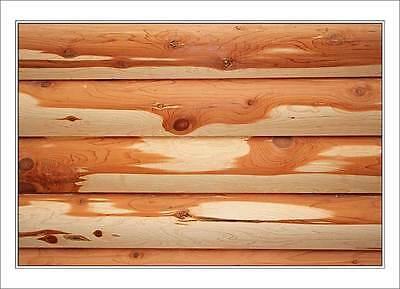 Cedar Logs for Log Homes 6x6 D Logs 8 FT - WE SHIP FREE SAMPLES