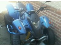 Quadzila 250cc on road