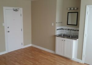 Renovated Bachelor Suite, Utilities Included