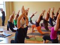 Group Yoga classes in Camden