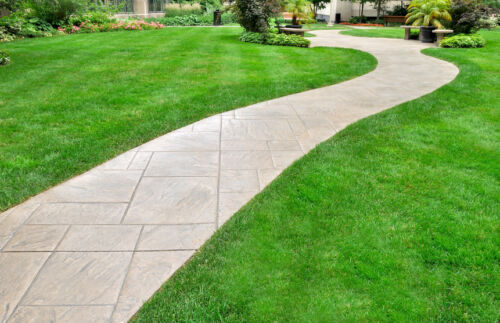 How to Repair Your Lawn