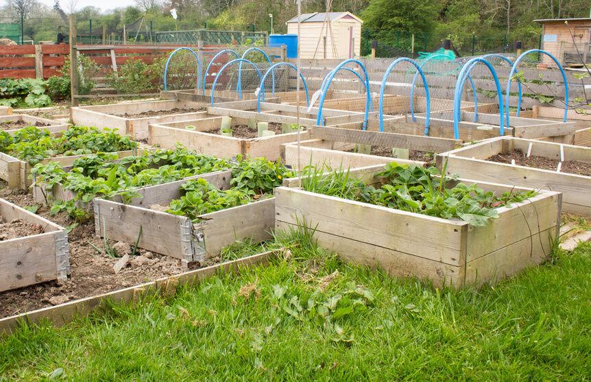 How to build a planter box ebay Building garden boxes