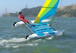 LOST: Hobie Wave Catamaran
