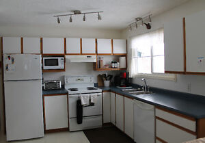 Kitchen Cabinets, Countertop, Sink & Tap