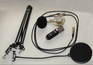 Microphone and Behringer USB interface
