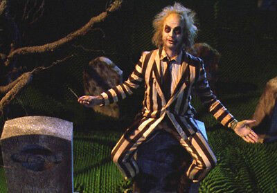 Beetlejuice Collector's Edition Costume Halloween Horror Mens Striped Suit Wig - Collectors Edition Halloween Costumes