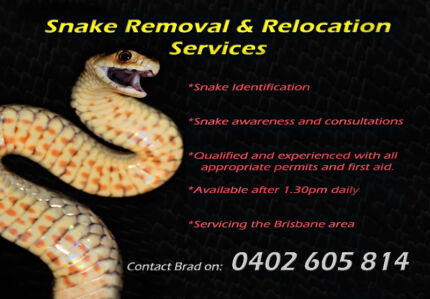 Snake catcher (Brisbane area) Mansfield Brisbane South East Preview