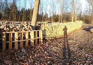 Dry fire wood for sale  Kingston Kingston Area image 3