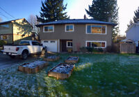Large updated home available Feb 1!