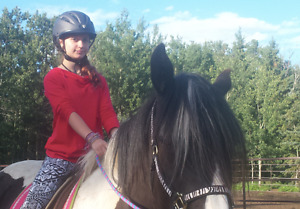 Essential Lessons in English and Western Riding
