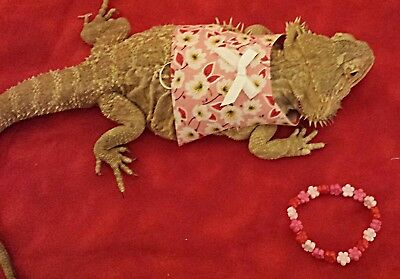 Lil' Bestie Bearded Dragon reptile Harness and Leash FLOWER DRESS