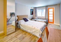 FULLY FURNISHED STUDIO APARTMENTS DOWNTOWN MTL