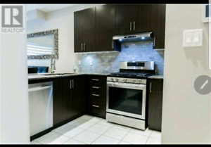Affordable pro $250 Backsplash and stone wall installation