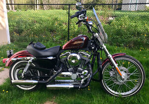 Red flake 72 2012 Harley Davidson Sportster