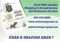 Shopping and Errand Service For Seniors and Others
