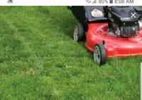 Cut grass care in the garden