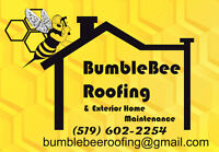 Professional Roofing in Woodstock