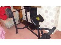 Gold's Gym Weights Bench with 45kg Weights