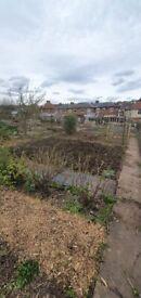 Garden Maintenance Services in Nottingham