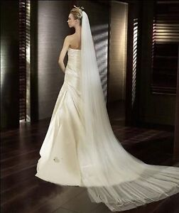 NEW Cathedral Veil --- Gorgeous!