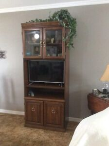 beautiful display and tv cabinet