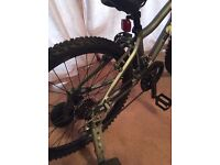 Bike for 10- 12 year olds Ridgeback Rx 24 Used once
