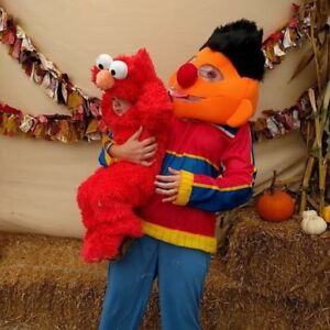 Sesame Street adult and toddler costumes