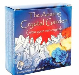 Grow Your Own Crystal Garden (3+ years). Great boredom buster for school holidays