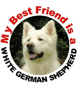 2-German-Shepherd-Dog-White-Car-Stickers-By-Starprint