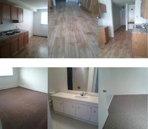 renovated condo for sale and i will pay your downpayment