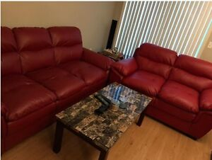 Sofa and love-seat in very good condition
