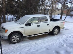 2009 Ford F-150 4x4 (Low Kms)