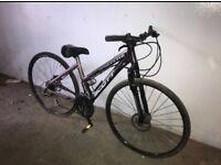 Scott sportster p55 small frame women's hybrid bike ladies disc brake road bicycle giant voodoo kona