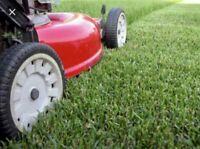 Lawn Care Services & Landscaping