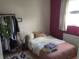 Housemate wanted for large double room in friendly, professional house share in Hanover