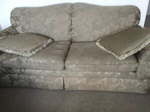Couch with 2 pillows