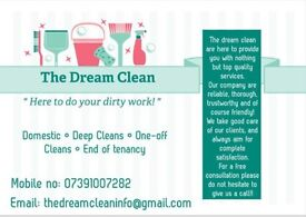 ARE YOU LOOKING FOR A DOMESTIC CLEANER?