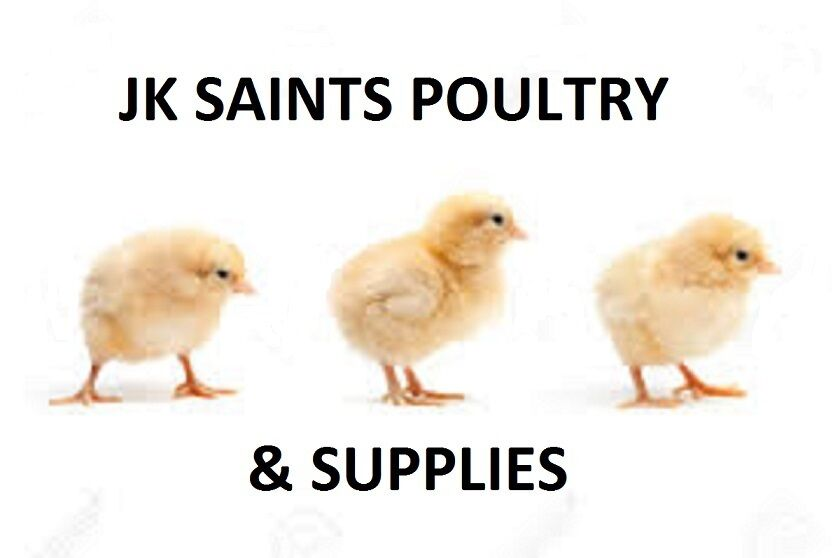 JK Saints Poultry & Supplies