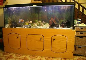 140 Gallon Fish Tank on Wood Stand with Two Lighting Panels